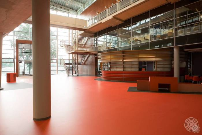 sound absorbing schools need wear resistant floors with soun